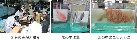 (左)刺身の実演と試食、(中)氷の中に魚、(右)氷の中にエビとカニ